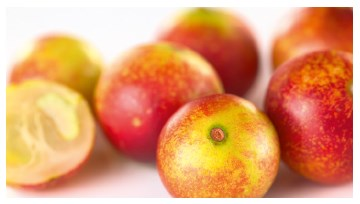 Camu Camu, frische Früchte